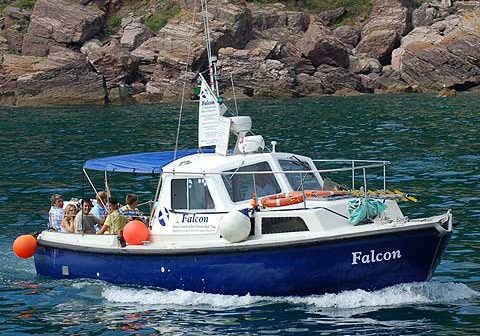 Boat Trips - Things To Do In Dartmouth